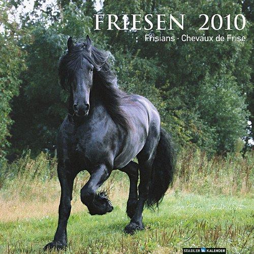 Friesen 2010