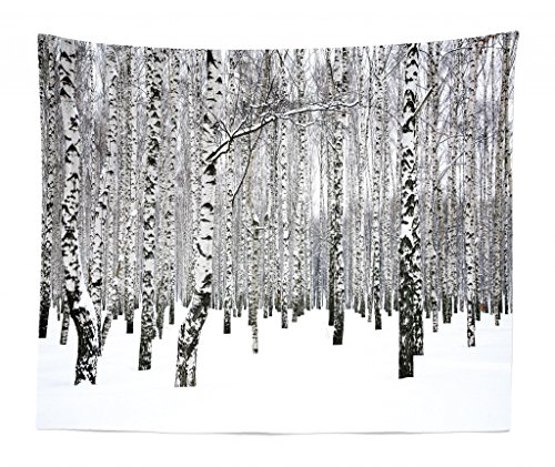 Lunarable Winter Tapestry King Size, Winter Birch Grove in The Forest with Leafless Tree Branches Scenic Nature Image, Wall Hanging Bedspread Bed Cover Wall Decor, 104