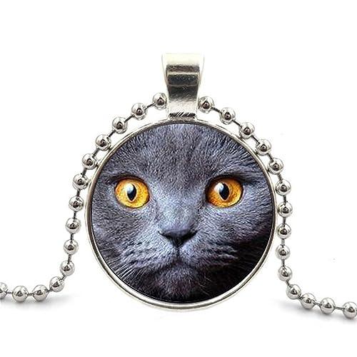 Amazon.com: Segard cabujón de vidrio colgante collar cadena ...