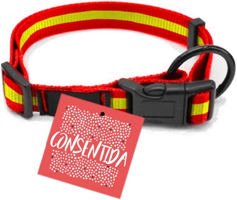 Consentida CN205542 Collar Seguridad España T-3, 33-50 x 2 cm, L ...