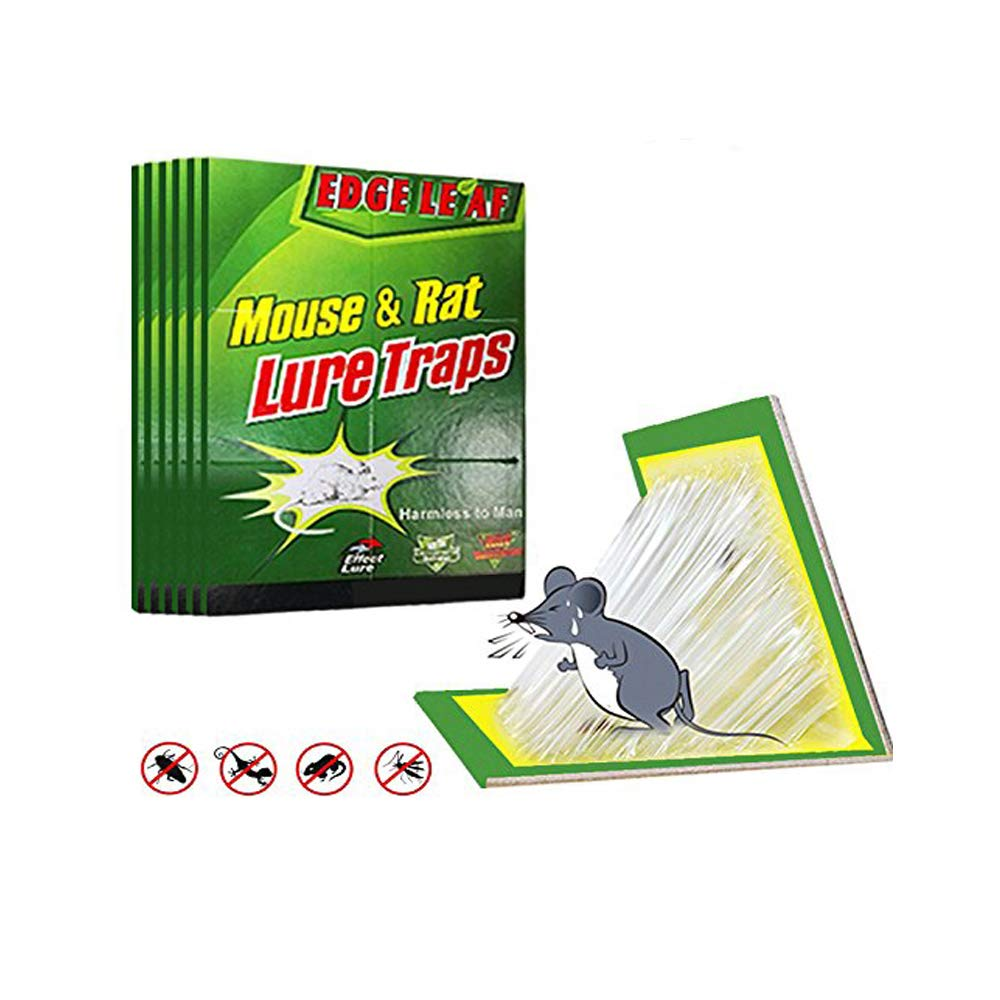 Boxalls Mouse Rat Glue Trap, 7pcs/Packs Strength Sticky Boards, Peanut Butter Scented, Catches Insect Lizard Spider Cockroach Rodent Scorpion Snake, Perfect Use for Indoor and Outdoor