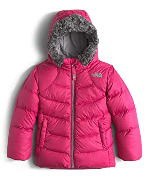 a6ffa245c THE NORTH FACE Little Girls' Toddler Polar Down Parka (Sizes 2T - 4T ...
