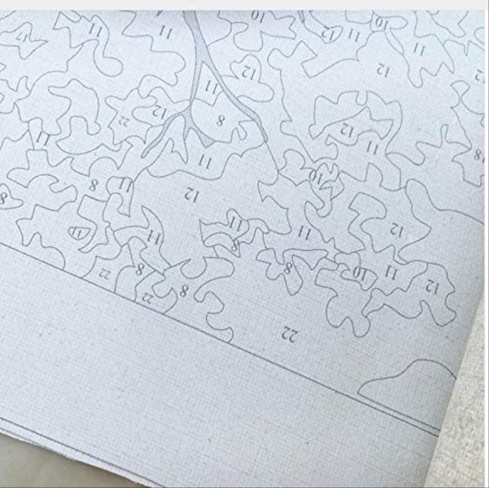 Toile Peinture /À lhuile Islande Volcan Rocher Cascade Nuit /Étoile Aurores Bor/éales Jouet Cadeau Unique 40X50CM QAZZSF Peinture /À lhuile De Bricolage par Kits De Num/éros