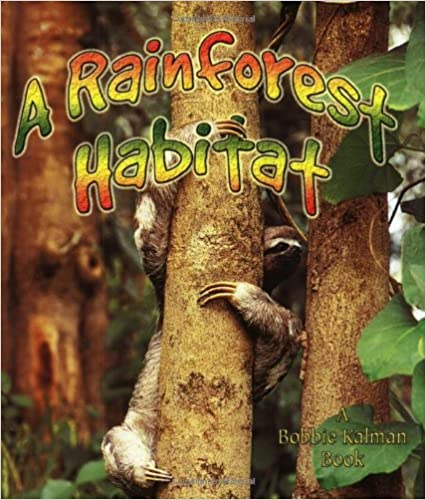 ?UPDATED? A Rainforest Habitat (Paperback) (Introducing Habitats). todos Delivery Powered Micron comprar harbor