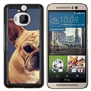 EJOOY---Cubierta de la caja de protección para la piel dura ** HTC One M9Plus M9+ M9 Plus ** --pug raza perro mascota cachorro terrier de Boston