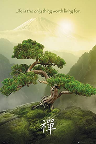 Amazon.com: GB Eye Zen Mountain Poster: Nature Posters: Posters ...