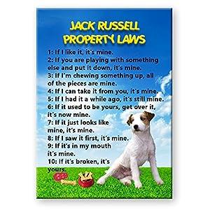 Jack Russell Terrier Property Laws Fridge Magnet 12