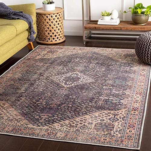 - Kittrell Updated Bohemian Farmhouse 2' x 3' Rectangle Updated Traditional 100% Chenille-Polyester Denim/Aqua/Butter/Rose/Dark Purple/Clay Area Rug