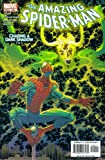 The Amazing Spider-Man #504 : The Coming of Chaos (Marvel Comics)
