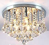 Agnes Lighting Ceiling Lamp, Crystal Shade, D11.82″ x H11″, 3 Lights Review