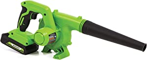 Greenworks SBL24B211 Blower, 2Ah Battery and Charger, Green
