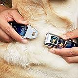 Disney Dog Collar DYR-Jasmine CLOSE-UP Full Color - Aladdin & Jasmine Scenes - Pet Collar