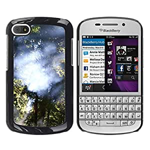 Paccase / SLIM PC / Aliminium Casa Carcasa Funda Case Cover - Plant Nature Forrest Flower 28 - BlackBerry Q10