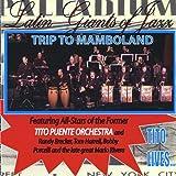Trip to Mamboland