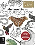 img - for Animalium Colouring Book (Welcome to the Museum) book / textbook / text book