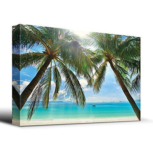Tropical Beach Palm Trees Overlook Ocean