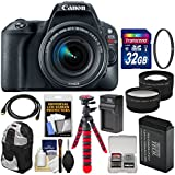 Canon EOS Rebel SL2 Wi-Fi Digital SLR Camera & 18-55mm is STM Lens (Black) 32GB Card + Backpack + Battery & Charger + Tripod + Tele/Wide Lens Kit