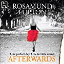 Afterwards Audiobook by Rosamund Lupton Narrated by Finty Williams