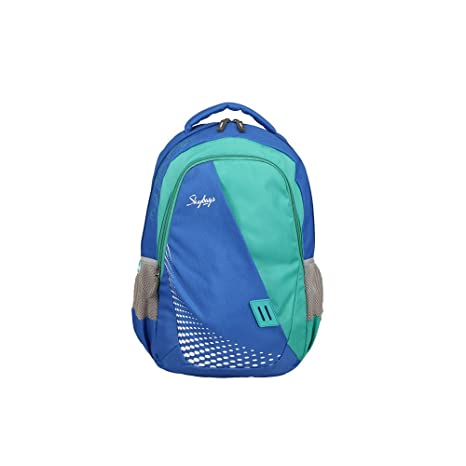 8847f2a16f50 Skybags 26 Ltrs Blue Casual Backpack (BPEON4BLU)  Amazon.in  Bags ...