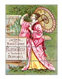 Woman With A Pink Dress Vintage Perfume Vertical Tile Mural Satin Finish 30''Hx24''W 6 Inch Tile