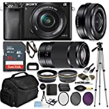 Sony Alpha a6000 24.3MP Mirrorless Digital Camera (Black) with 16-50mm and 55-210mm Lenses Professional Kit + 32 GB Sandisk Memory + Filters + Deluxe Bag + Auxiliary Lenses + Accessories
