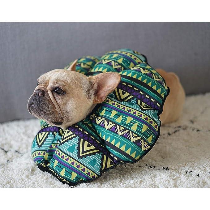 XDYFF Collar Isabelino Perro Mascota Gato Cono contra lamer, rascar, morder, bañarse, Protector de Collar de Girasol Impermeable y Encantador: Amazon.es: ...