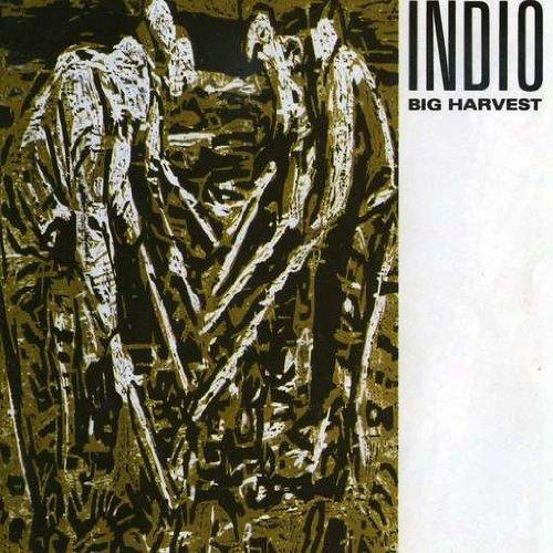 indio big harvest - 2