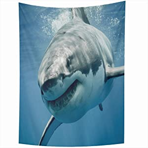 Onete Tapestry Wall Hanging 50x60 Inches Great Apex White Smiling Carcharias Threat Animals Scuba Wildlife Diving Ocean Predators Nature Tapestries Bedroom Living Room Dorm Home Decor Blanket