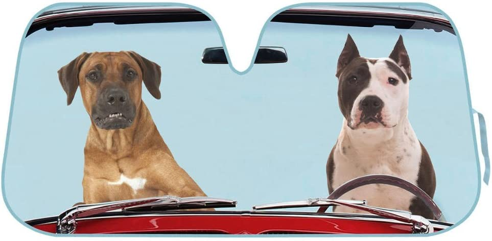 2 Dogs Driving Front Windshield Sun Shade - Accordion Folding Auto Sunshade for Car Truck SUV - Blocks UV Rays Sun Visor Protector - Keeps Your Vehicle Cool - 58 x 28 Inch