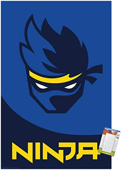 Trends International Ninja-Logo Mount Wall Poster, 22.375