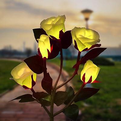 Outdoor Solar Garden Stake Rose Lights, LED Solar Powered Light with 5 Rose Flowers, Waterproof Solar Landscape Lighting Decorative Lights for Garden, Patio, Yard, Backyard, Pathway, Wedding (Yellow) : Garden & Outdoor