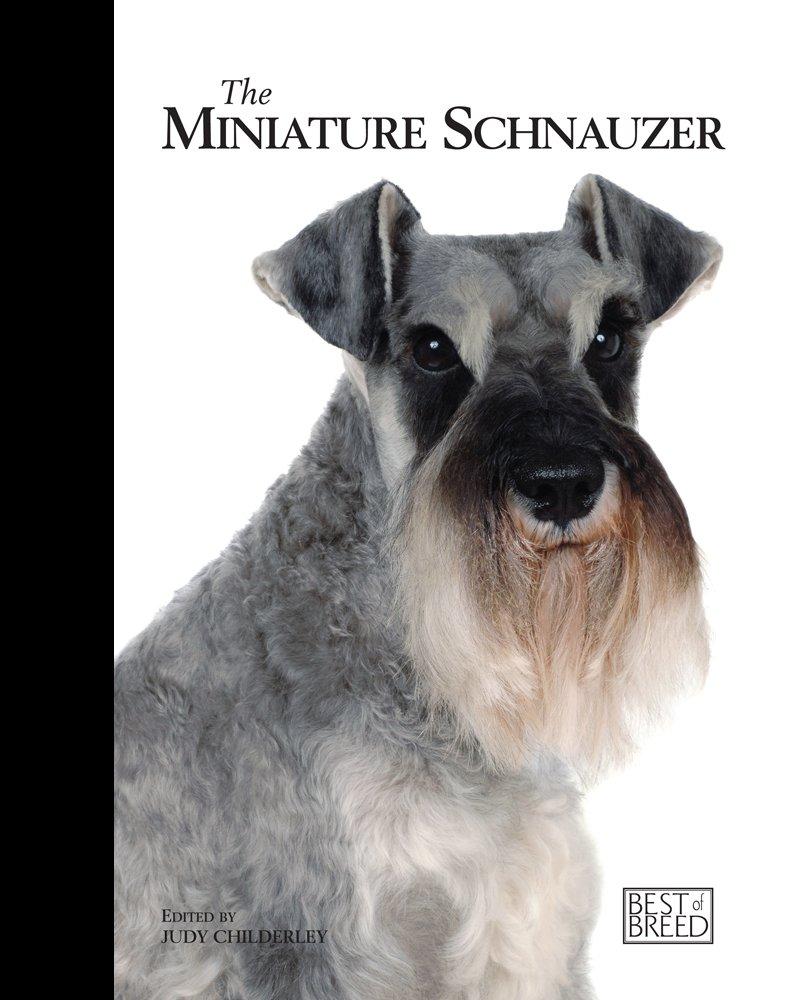 The-Miniature-Schnauzer-Best-Of-Breed