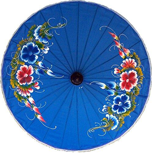 Umbrellas Hand Painted (Oriental-Decor Good Fortune Hand Painted Umbrella 28 Inch)