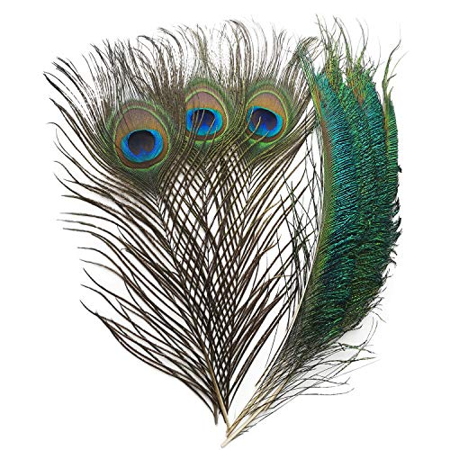 (Piokio 40pcs Peacock Feathers 10-12inch and 25pcs Peacocks Sword 12-15inch for Christmas DIY Craft, Wedding)