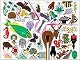 Charley Harper's Animal Kingdom: popular edition