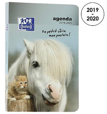 Oxford - Agenda escolar diaria Funny Pets 2017 – 2018, 1 día por página, 352 páginas, 12 x 18 cm, perro (idioma español no garantizado)