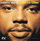 After The Storm (Album Version)