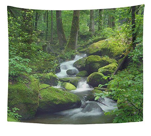 (Emvency Tapestry Print Green Forest Cascade Falls Over Mossy Rocks Waterfall Water Stream River Tree Rain Home Decor Wall Hanging For Living Room Bedroom Dorm 50x60 Inches)