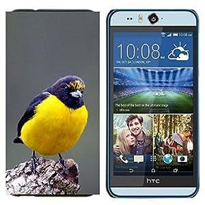YiPhone /// Prima de resorte delgada de la cubierta del caso de Shell Armor - azul songbird Naturaleza plumas - HTC Desire Eye M910x