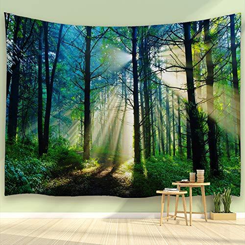 ALFALFA Sunshine Forest Tapestry Morning Green Trees Woodland Grasses Natural Landscape Wall Hanging for Living Room Bedroom Dorm, 90 W x 71 L (230cmx180cm) - Misty Sunshine Forest