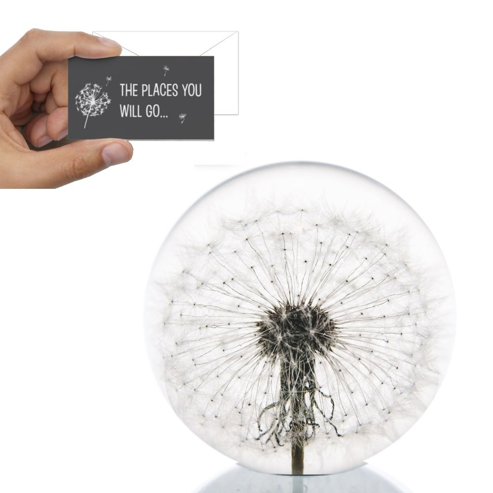Dandelion Paperweight with Free Card - Made from a real dandelion for graduation gift with free Places you will go card and envelope DandelionPaperweights.com