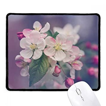 Amazon pink beautiful white flowers non slip mousepad game pink beautiful white flowers non slip mousepad game office black titched edges gift mightylinksfo
