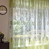 Best Norbi Curtains For Living Rooms - Norbi Leaves Sheer Curtains Rod Pocket Room Window Review