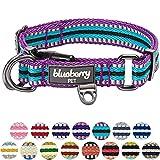 Blueberry Pet 15 Colors 3M Reflective Multi-colored Stripe Dog Collar, Violet and Celeste, Medium, Neck 14.5''-20'', Adjustable Collars for Dogs