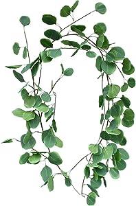 Sweepstakes: LiQiDécor 5.5FT Long Artificial Vines Faux Silk Eucalyptus…