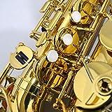 Yamaha YAS-480 Intermediate Eb Alto Saxophone, Gold