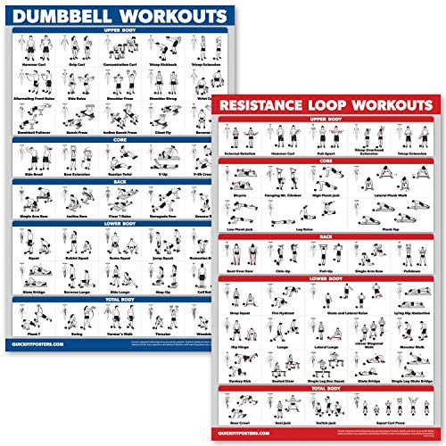 QuickFit 2 Pack Dumbbell Workouts & Resistance Bands Loops Exercise Poster Set - Laminated 2 Chart Set - Dumbbell Exercise Routine and Resistance Loops Workouts (Laminated, 18