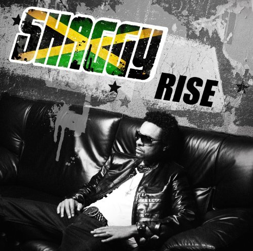 Shaggy - Rise - Zortam Music