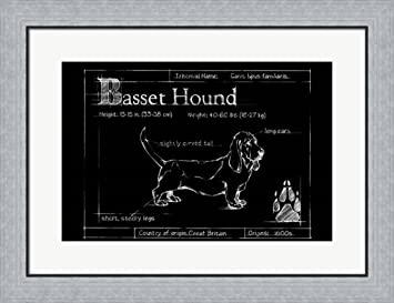 Amazon blueprint bassett hound by ethan harper framed art print blueprint bassett hound by ethan harper framed art print wall picture flat silver frame malvernweather Image collections
