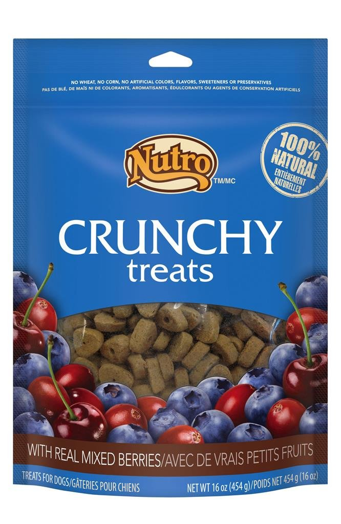 NUTRO Crunchy Dog Treats Mixed Berries 16 oz